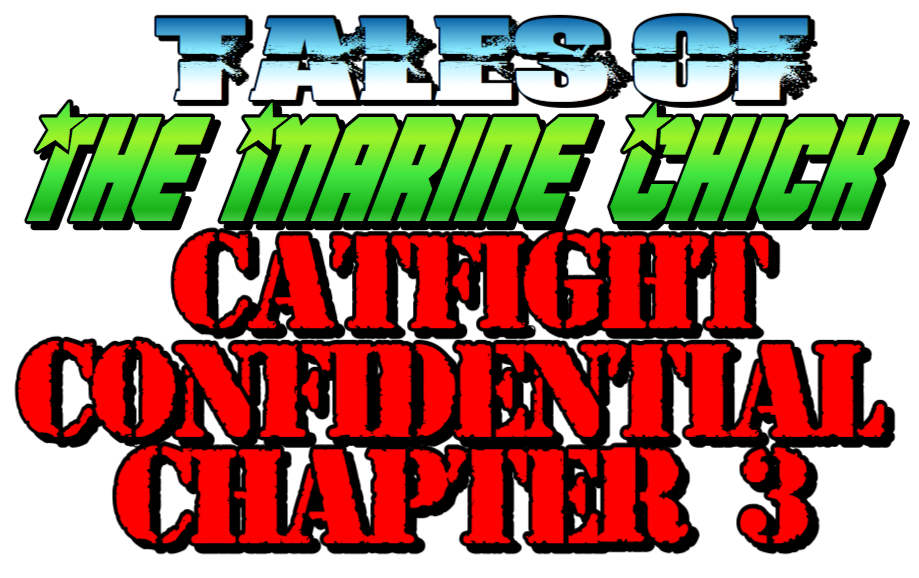 Tales of the Marine Chick: Catfight Confidential: Chapter 3 by Anna the Marine Chick